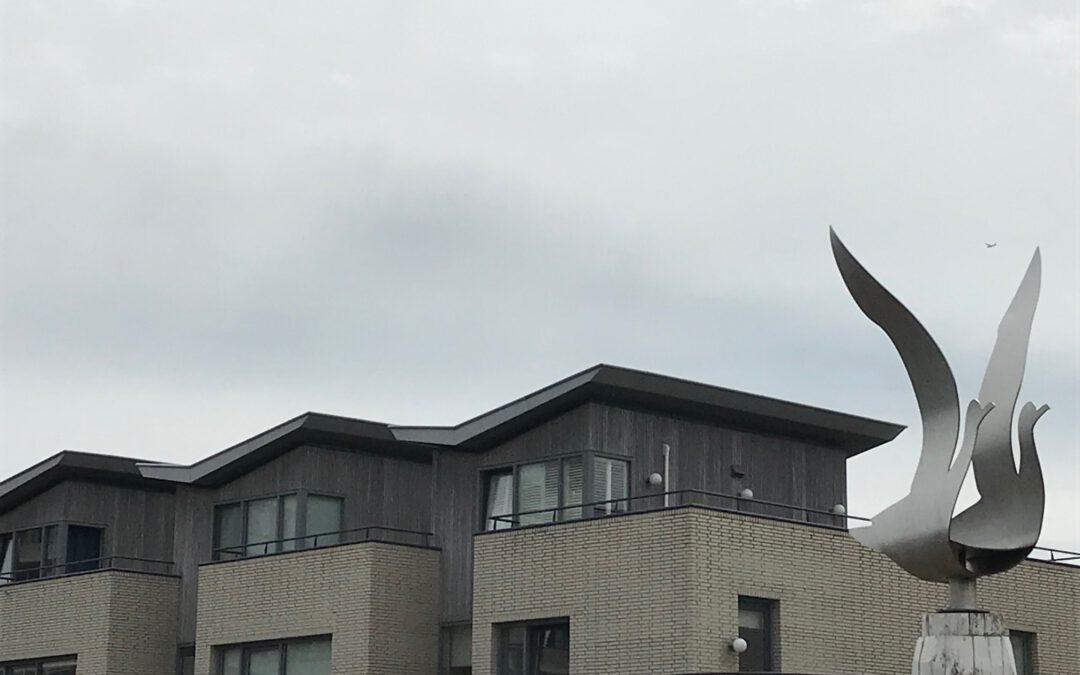 Dakopbouw als vliegende vogel