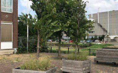 Parkeerplaatsen met groene uitstraling