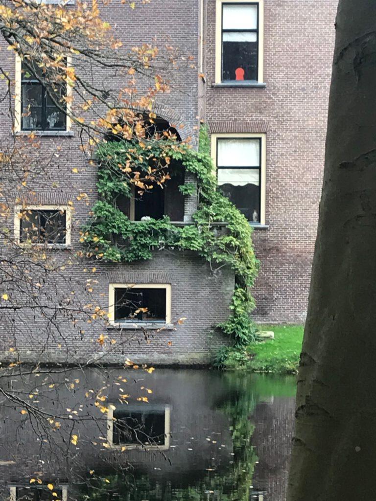 Martin De Jong Blog