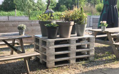 Duurzaam hergebruik oude pallets als basis voor plantenpotten.